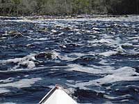 Big Shoals Suwannee River
